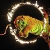 Цирки в Омске